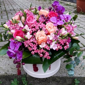Mevsim Çiçekleri Kutu Arajmanı}