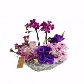 Mini orkide aranjmanI}